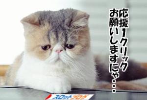 猫バナー1